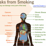 How smoking damage your organ
