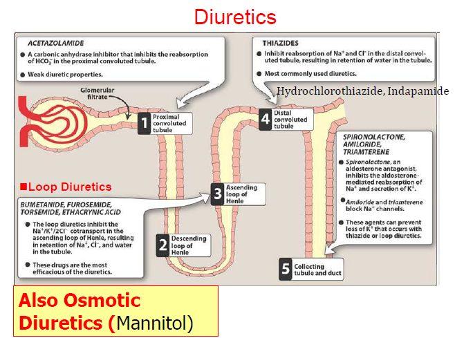 CLASSIFICATION OF DIURETICS 4