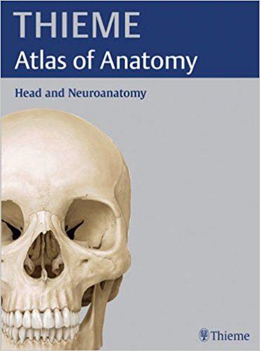 Head and Neuroanatomy (THIEME Atlas of Anatomy) 1st Edition Book Cover