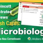 Lippincott Illustrated Reviews Flash Cards Microbiology