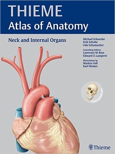Neck and Internal Organs Book Cover