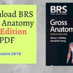 Download BRS Gross Anatomy 9th Edition PDF