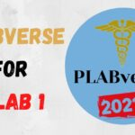 Download PLABverse PDF 2020