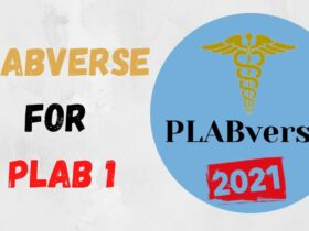 Download PLABverse PDF 2020